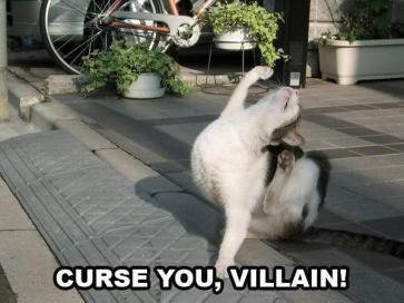 curse you.jpg
